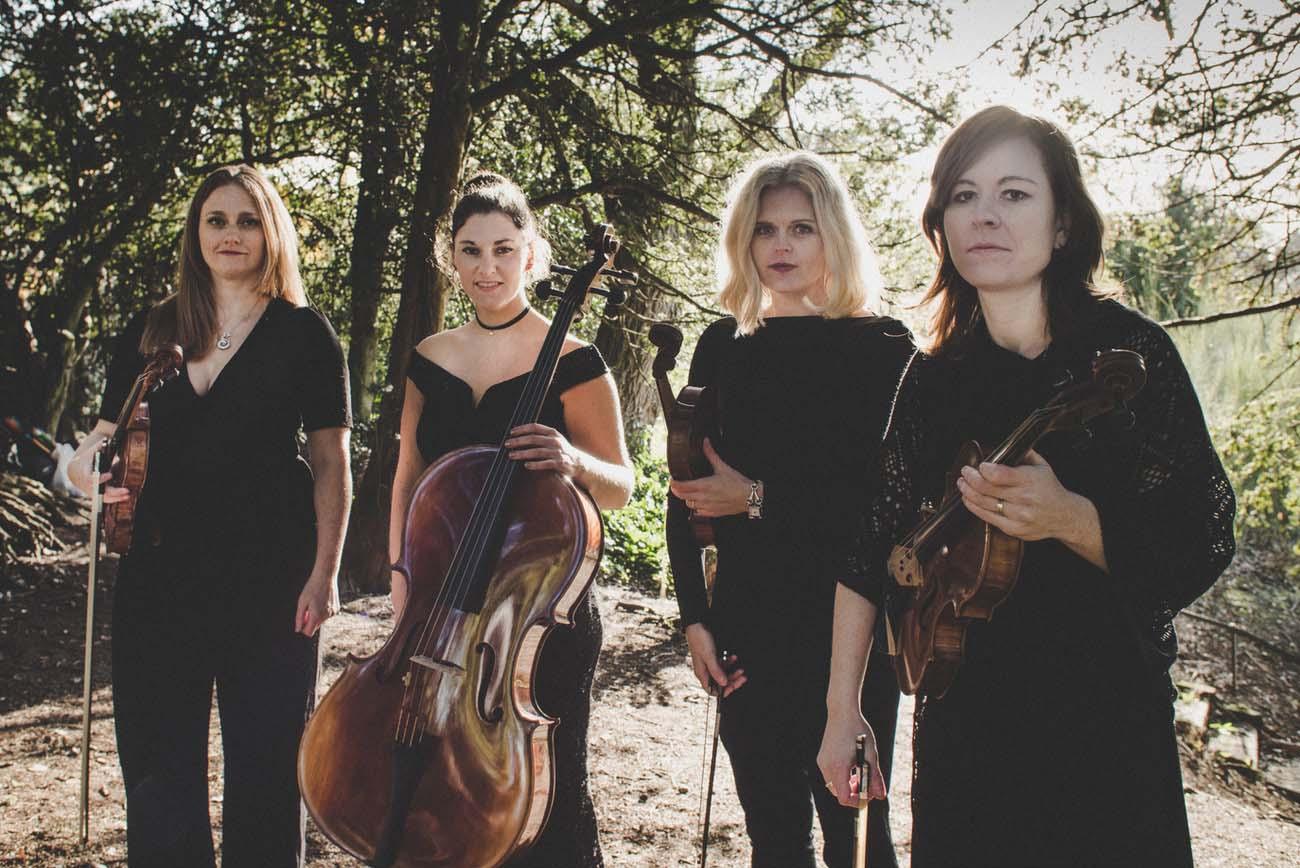 Maple Rose Strings