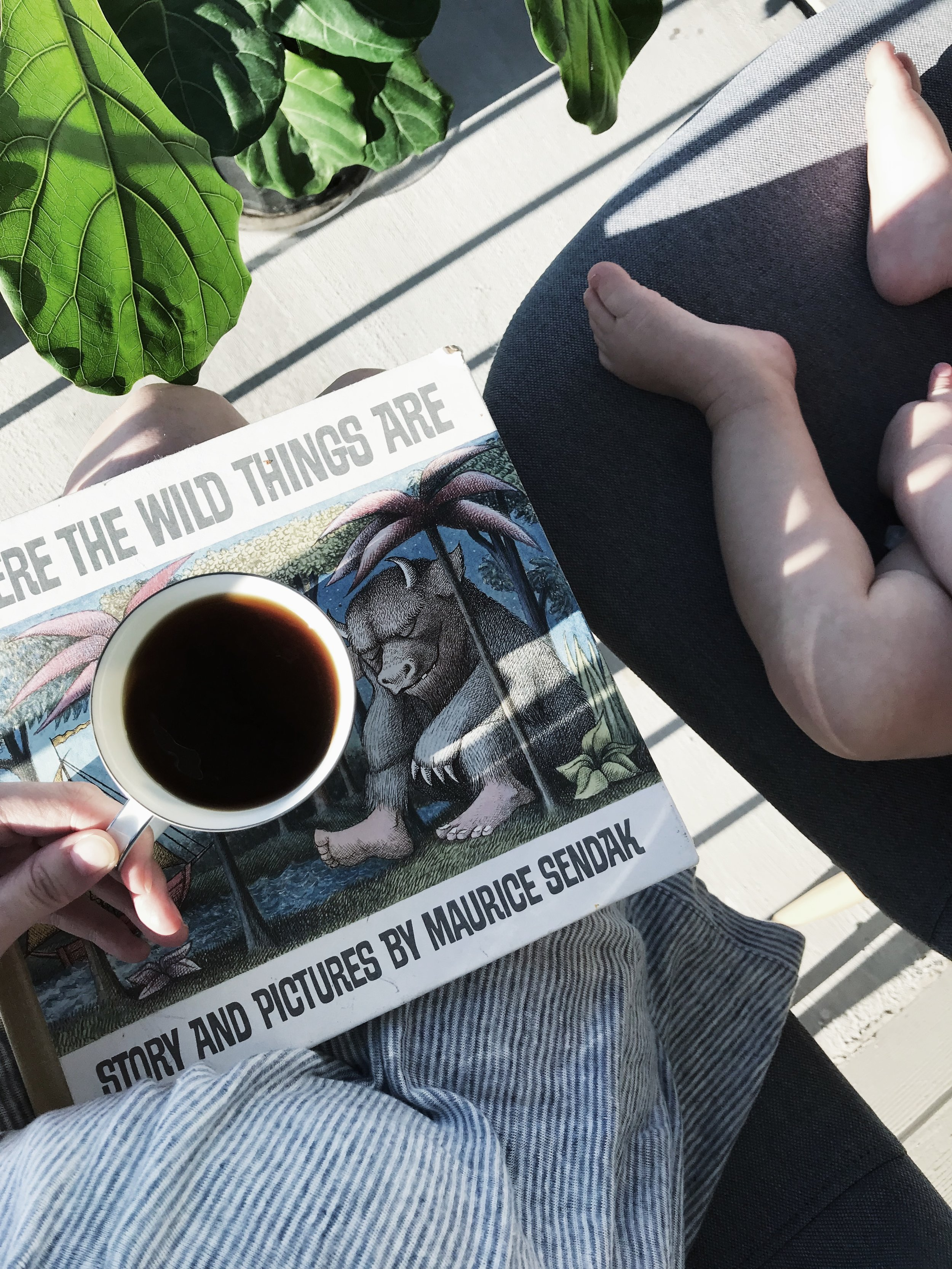 MY SLOW MORNING RHYTHM - This Wild Home