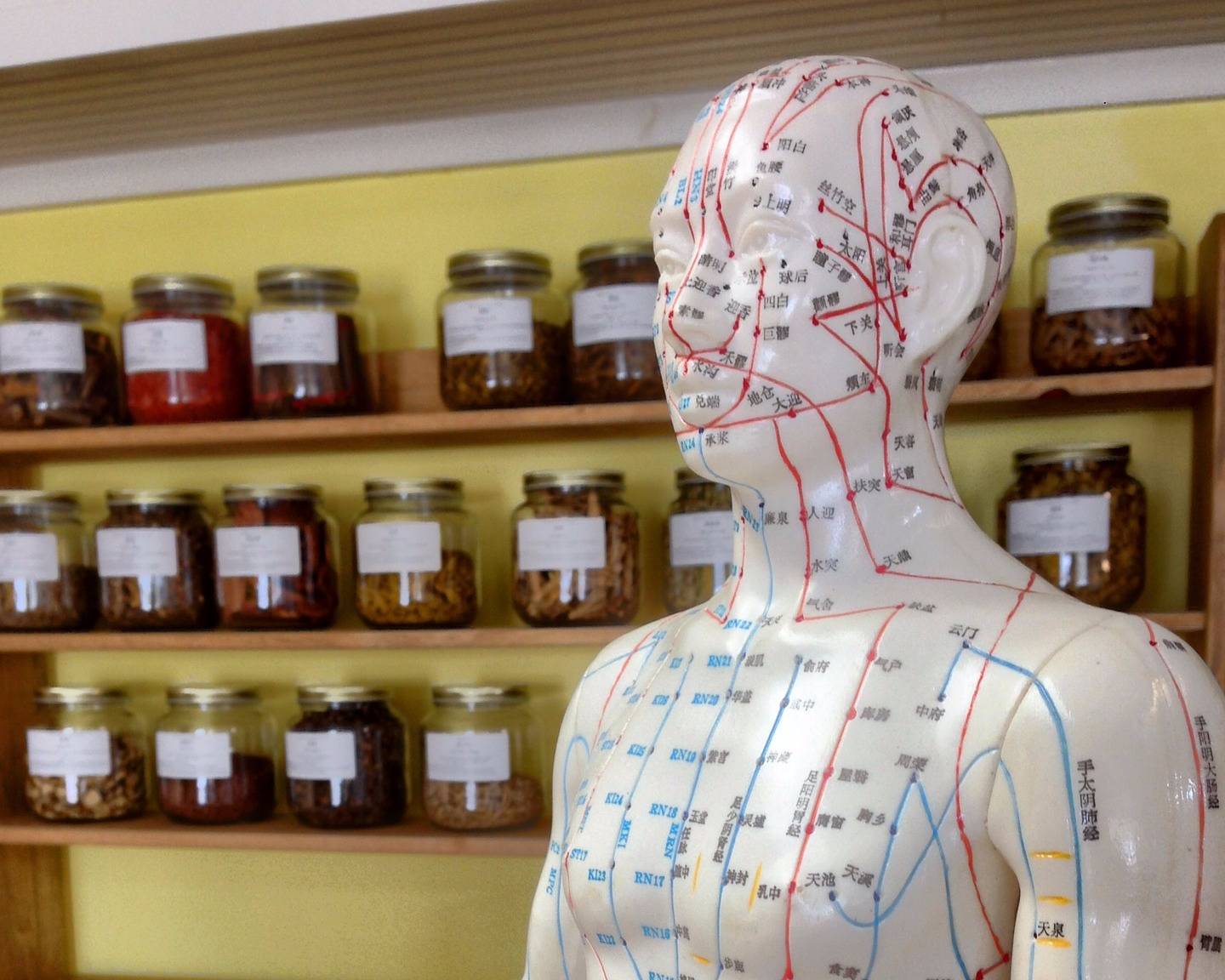 acupuncture + Herbs.jpg