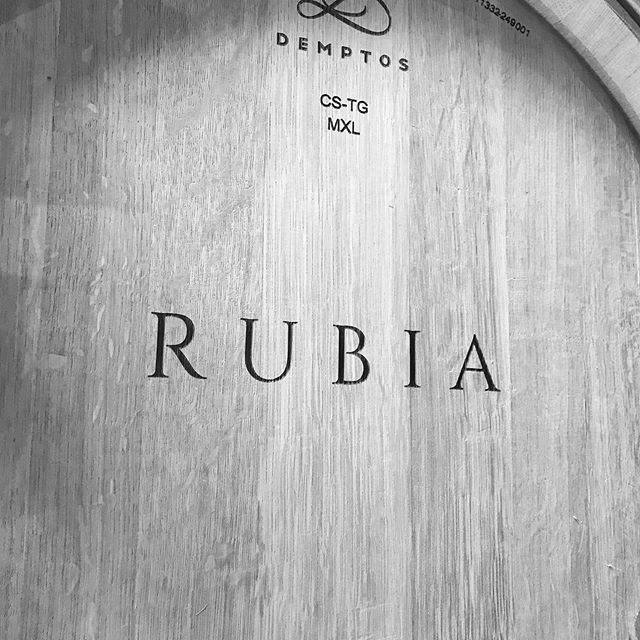 Anticipating the @2019napavalleyharvest  with new @rubiawines wine barrels that arrived today.  Time to make room for your @rubiawines selections.  #rubiawines #napavalleywines #napavalleycabs #howellmountaincab #jonesfamilyvineyards #russianrivervalleychardonnay #wentechardonnay #ritchievineyard #boutiquewines #newwineproject #cultwines #2019napavalleyharvest