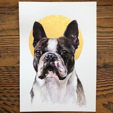 Vicki Liu Pet Portrait Artist   Madison, WI