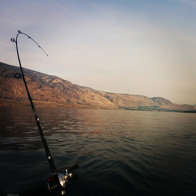 Okanagan Fishing Charters  Picture yourself on a boat, next to majestic mountains over calm, tranquil waters when suddenly, a line sings, and a reel screams and the deck erupts with shouting. You grasp the rod and your eyes go wide, as adrenaline pumps through your veins. You've never encountered anything like this before. You muscle the beast to the boat. You hold it in your arms like living gold, pictures are snapped, and your mind, like the line, is still reeling. Nothing compares to catching an Okanagan Sockeye Salmon: A great fighter of all salmon. It's a life-changing experience, a rite of passage, and a tale you will tell to your grandchildren. And when fishing in the Okanagan, there are bigger prizes too. Our Okanagan fishing charters angle for kokanee, trout, bass and lake trout reaching 20lb and the occasional 25 lb slab! No matter what your skill level, we can provide a challenge, or an introduction to the exciting sport of Okanagan fishing.  Our guides are knowledgeable of the area, handy with a point-and-shoot, and always ready to accommodate your specific requirements, from type of lure, to choice of brew. Simply bring your tidal-water angling license , food and refreshments, and we'll take of the rest. We recommend a minimum of 3 licenses be available before hitting the water (the skipper will ask for printed copies before departure). If you don't have a license, you can purchase and print a license via  http://www.fishing.gov.bc.ca/.  Please note that while our Okanagan fishing trips are usually catch and keep and therefore stamps will be required for any fish you would like to keep. We can also arrange cleaning and bagging of your catch for transport upon request.