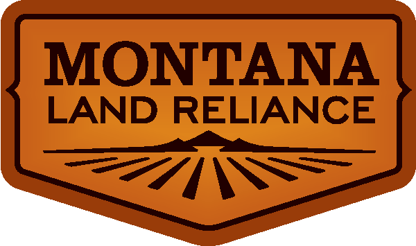 MLR_logo.png