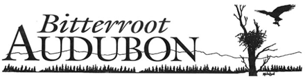 Bitterroot Audubon Society