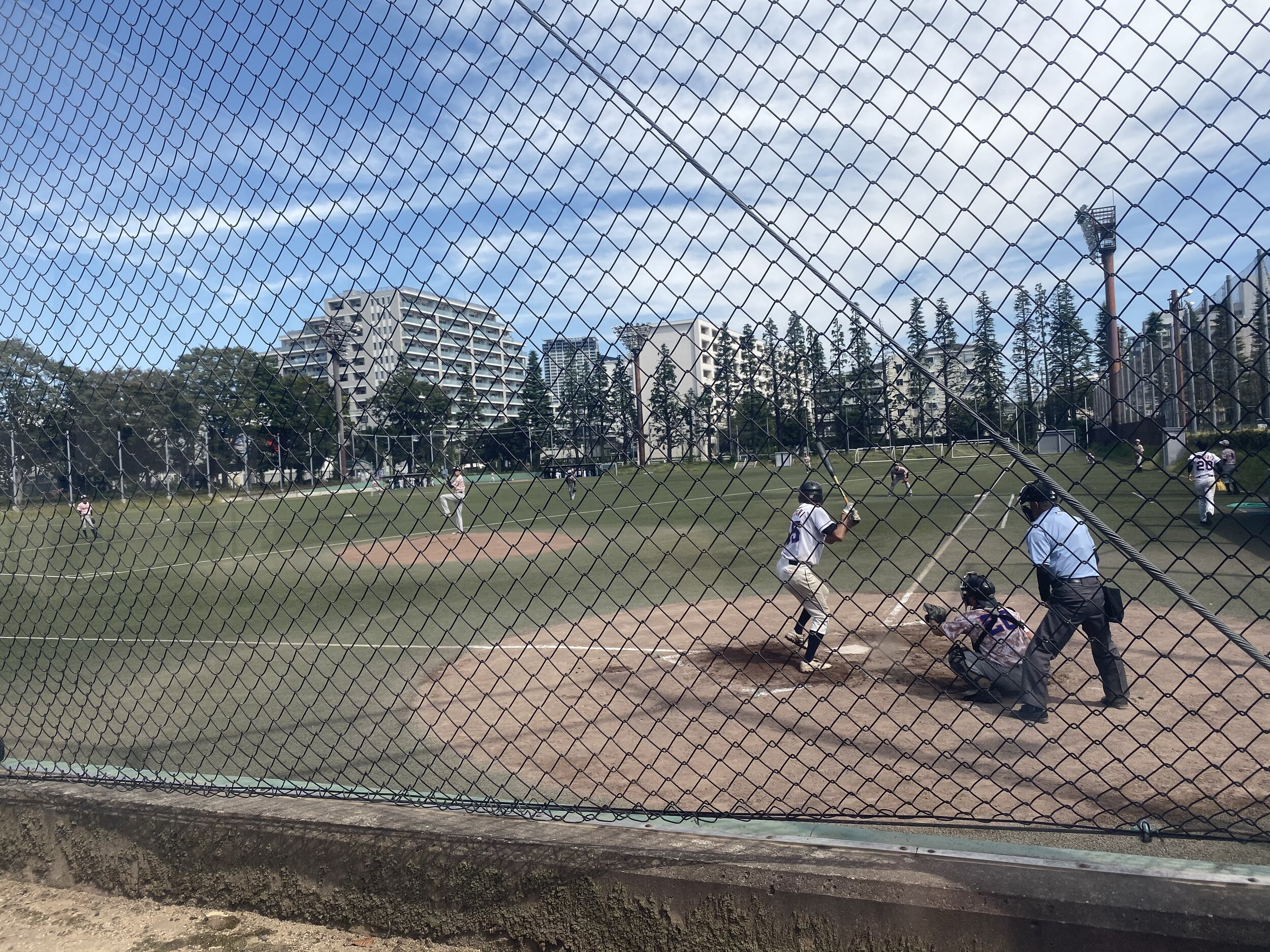 tokyo baseball color