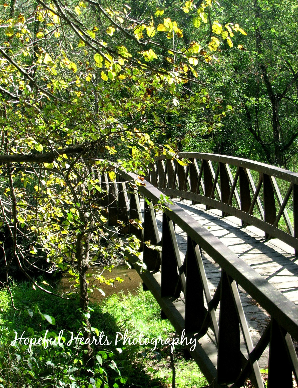 Bridge, hh sig.jpg