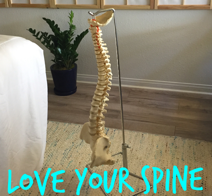 love-your-spine.png
