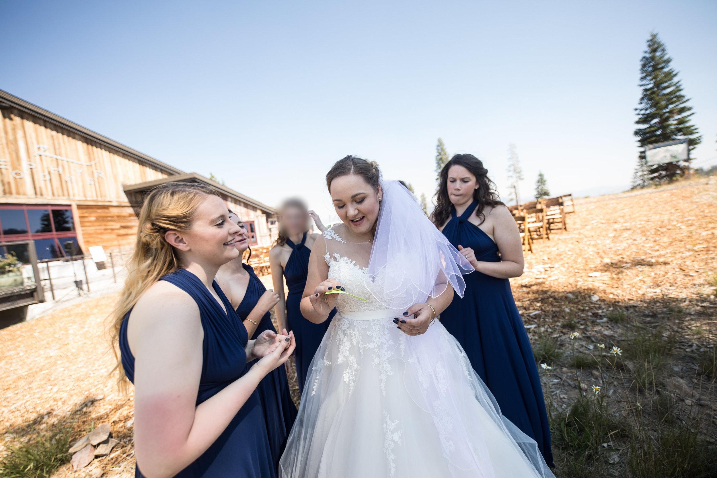 Aime and Cedric Smith Wedding 337.jpg