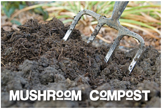 Mushroom Compost - OPEN FOR COMPOST SALES M-F 8am-4:30pm.$10 PER TRACTOR SCOOP (ABOUT A 1/2 YARD) WE LOAD. OR, PREFILLED BAGS @$5 EA.