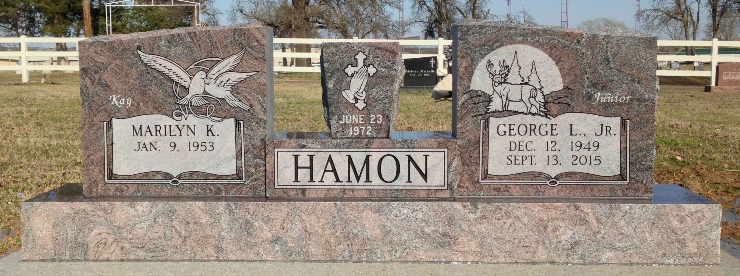Hamon - Oak Park.jpg