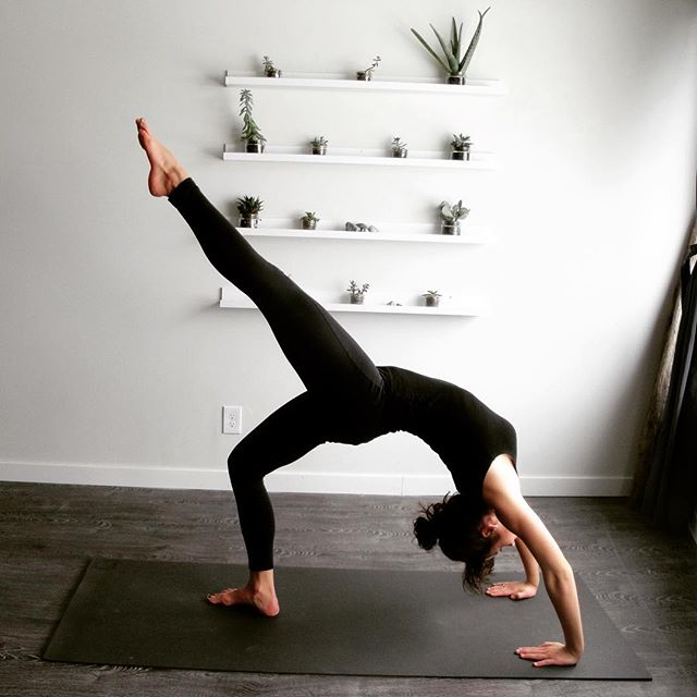 Urdhva Dhanurasana #fullwheel Stretches the spine, shoulders, chest, upper back, and thighs. It also stimulates the thyroid and pituitary glands increasing energy and elevating mood!  For an added challenge try lifting one leg and then the other. #findbalance @daniellehachey