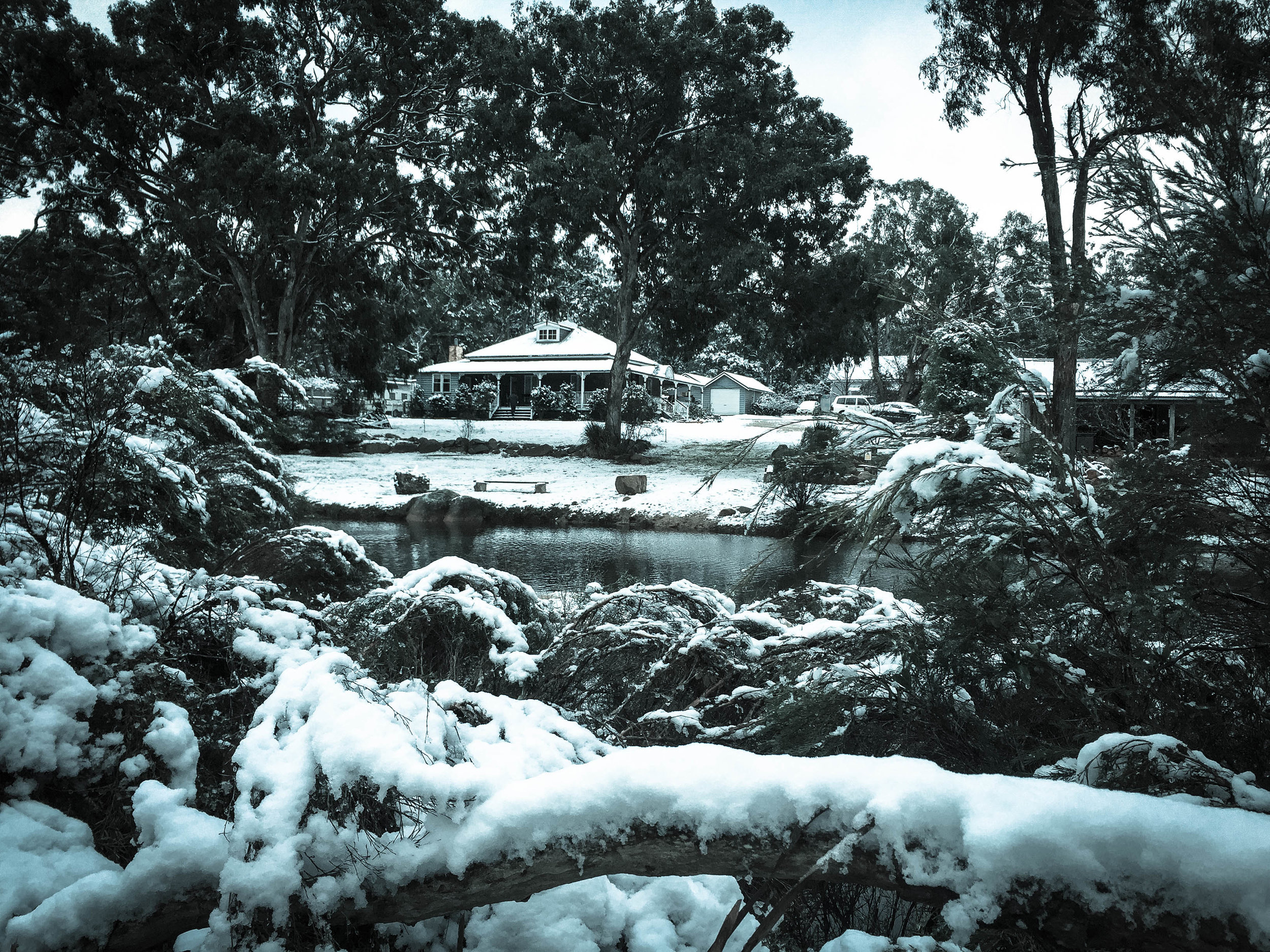 July 2015 Snow