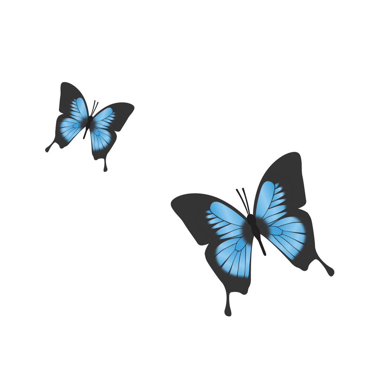 CSCC_Balam_Balam_Butterflies_RGB.png