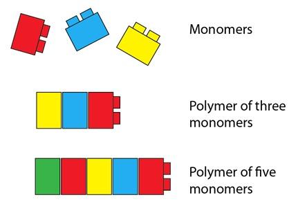 Imagen de biologos.org