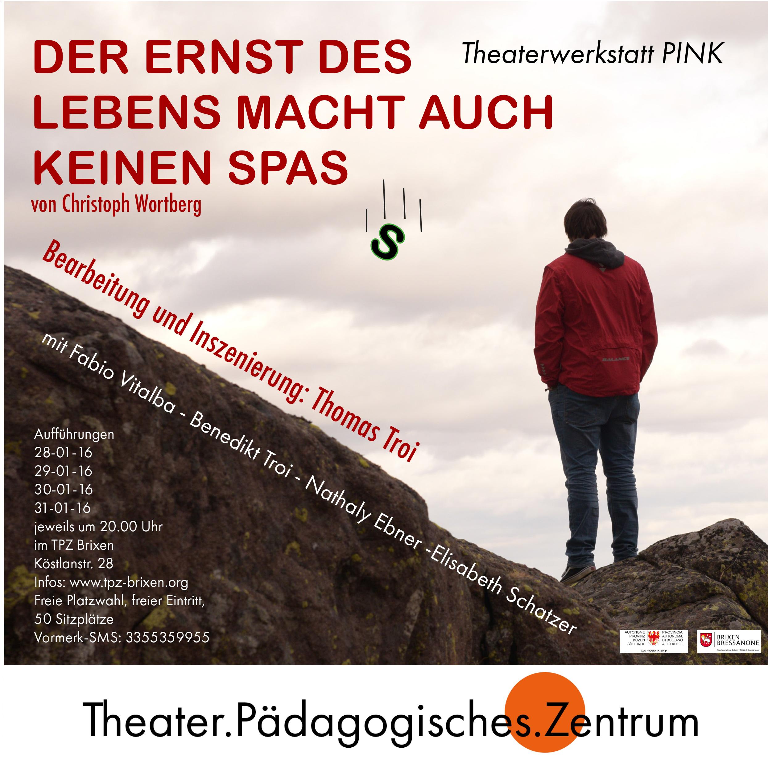 2016 pink Ernst des Lebens Plakat.jpg