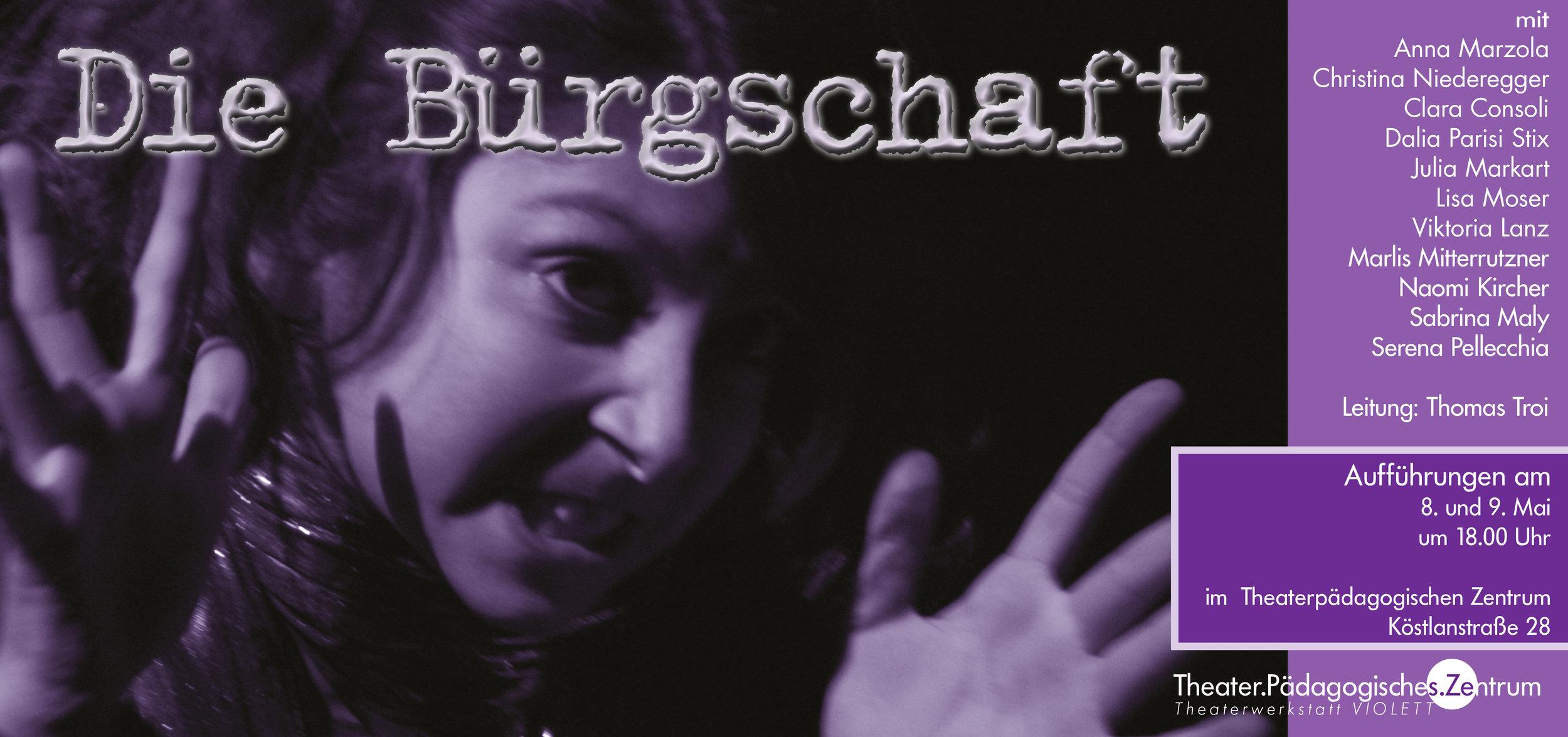 2009 violett Bürgschaft Plakat.jpg