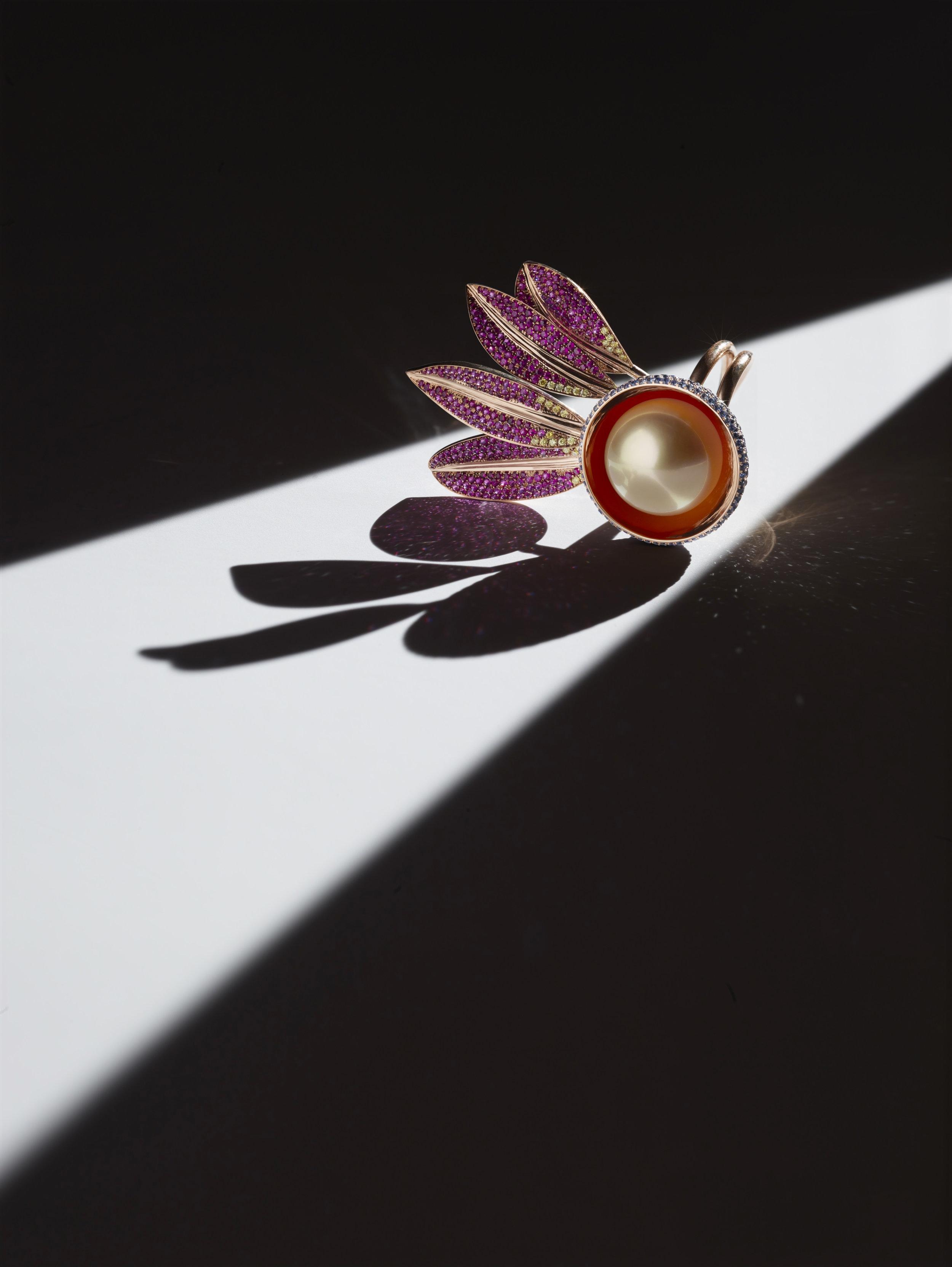 Seed takes Flight