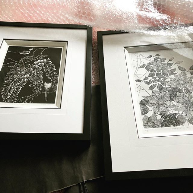 I am parcelling up prints today and these two are off to a new home. Wagtails and Wisteria (Wood engraving) and Travellers Joy (Dry point print). #shropshireartist #woodengraving #drypoint #drypointprint #printmaking #offtothepostoffice #framedprints