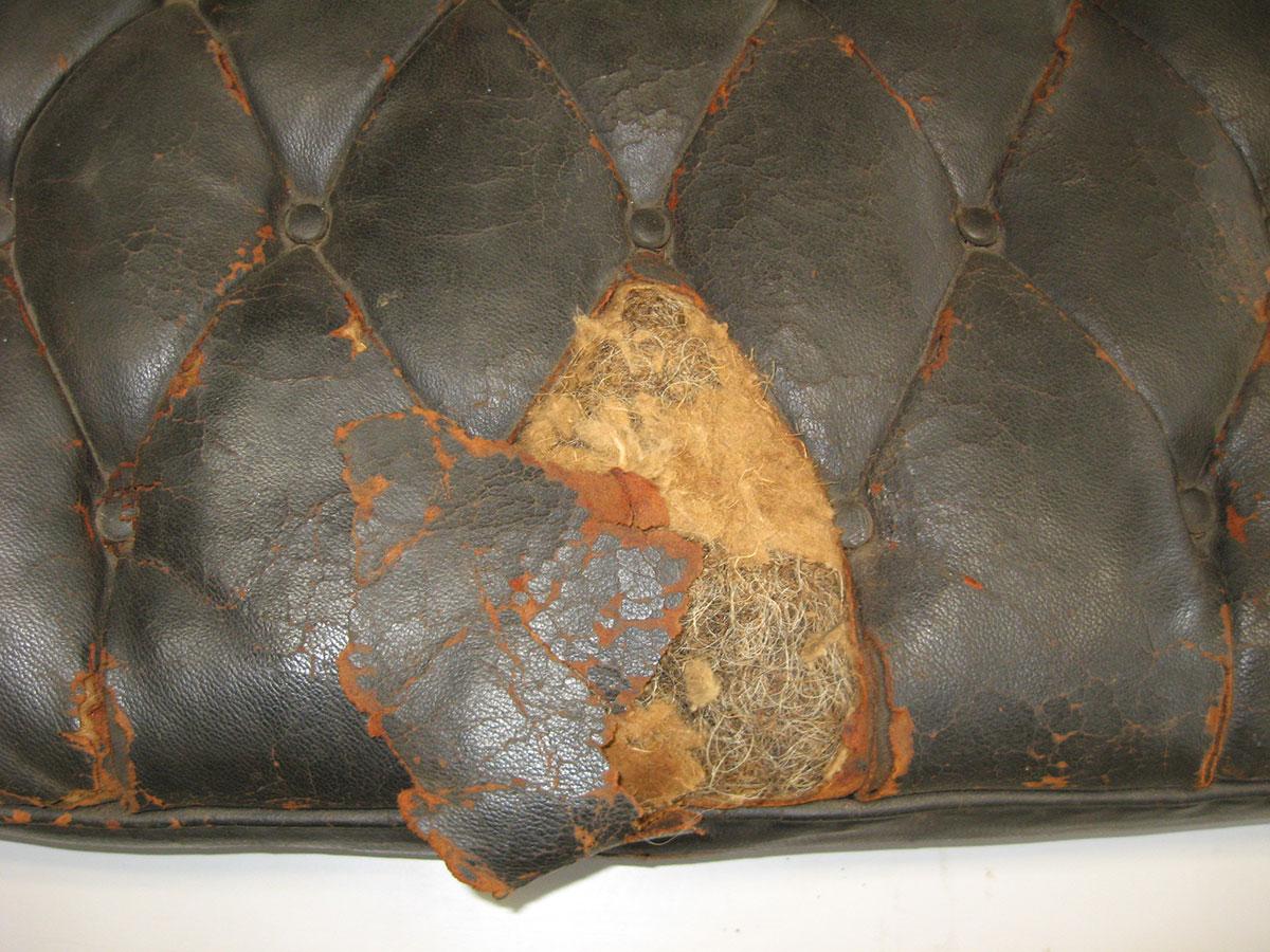 Lafayette-carriage-cushion-bt.jpg