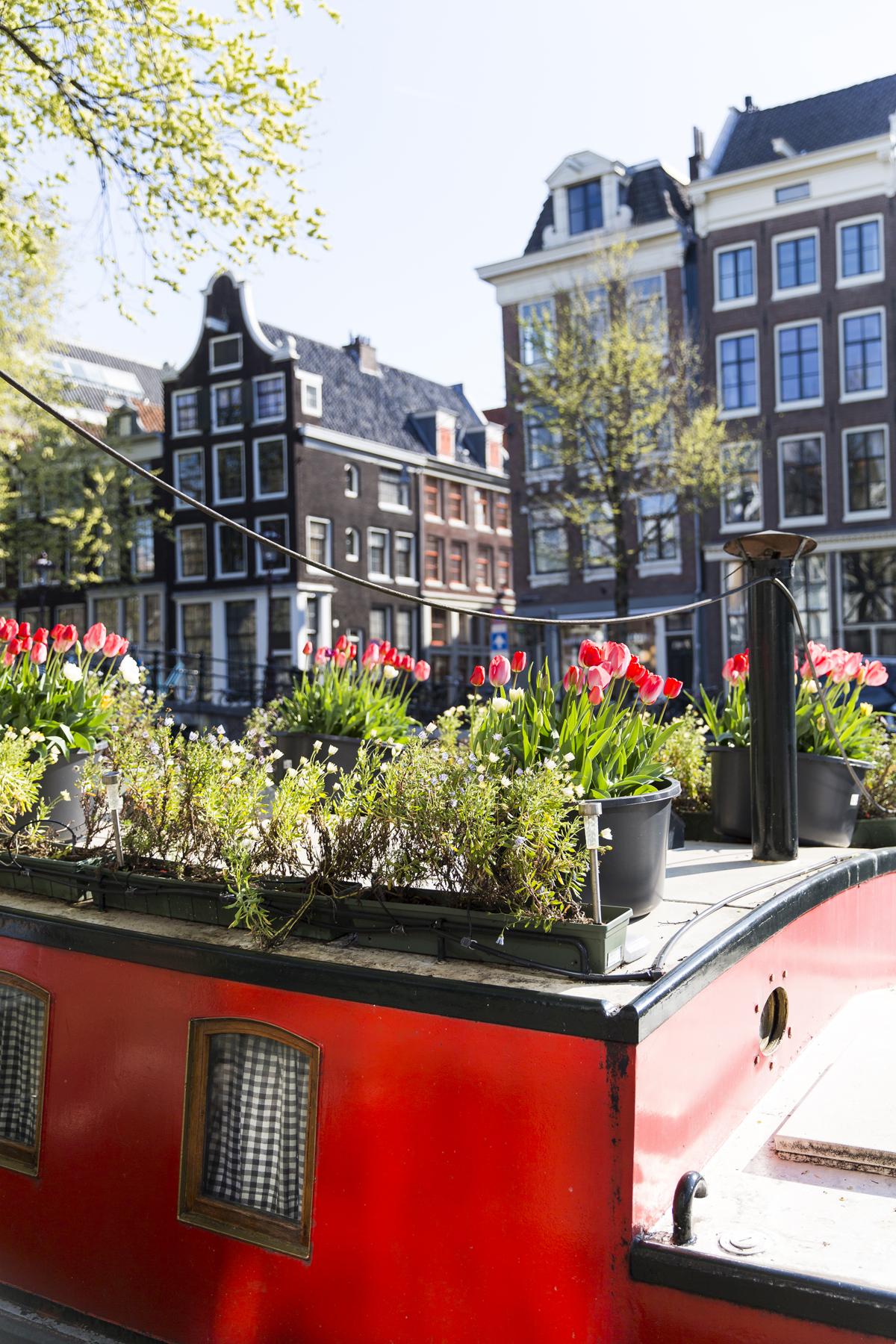 Amsterdam_087.jpg