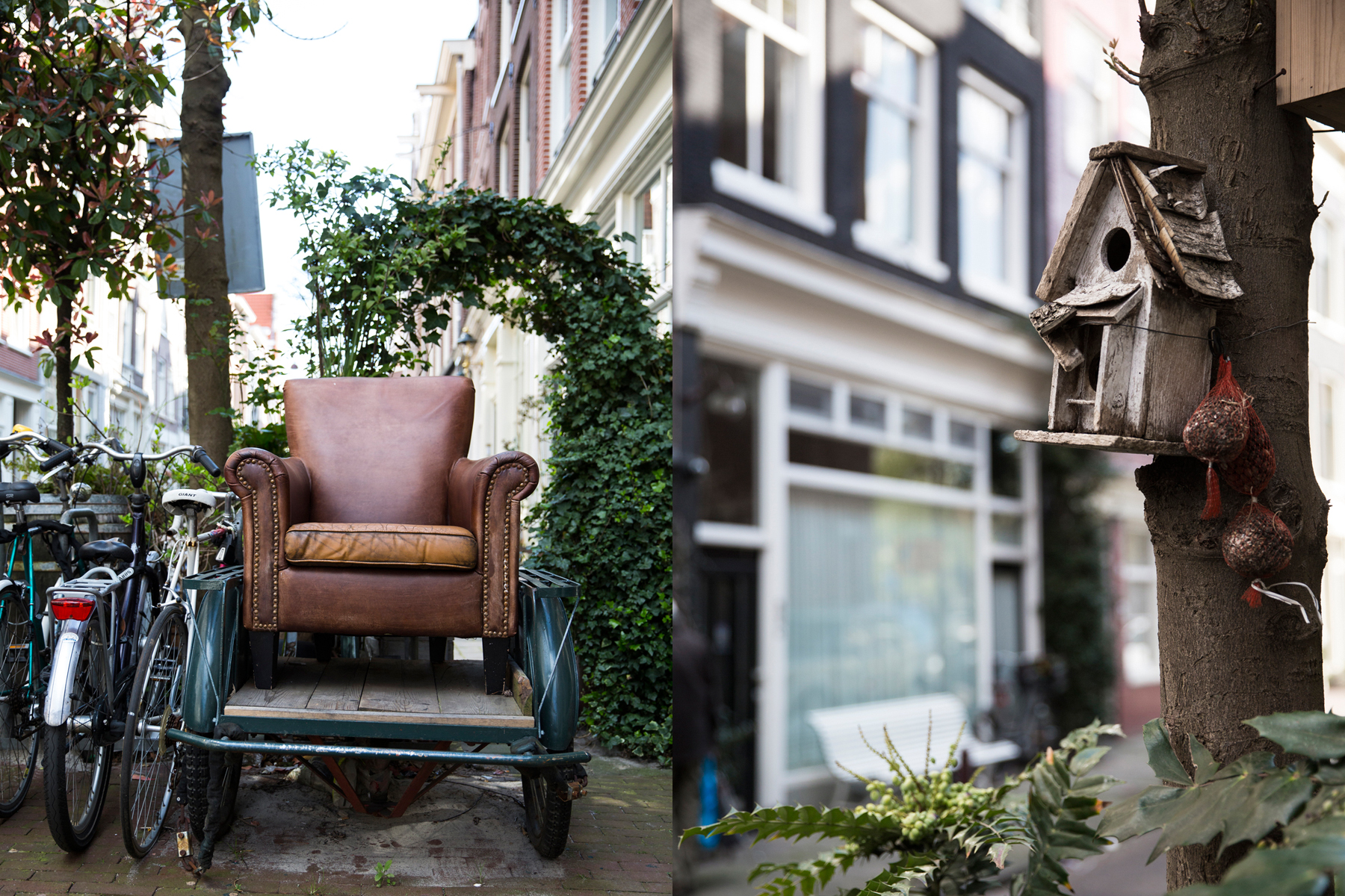 Amsterdam DPS 8.jpg