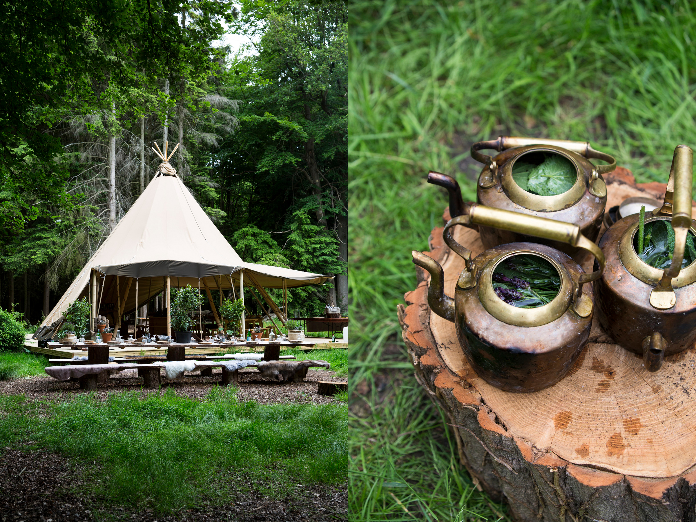 Nomadic Outdoor Woodland Dining Event
