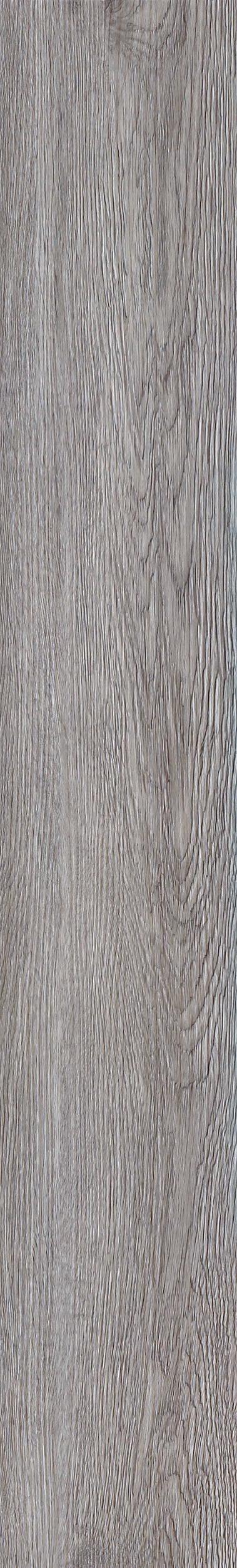 038 Silver Oak