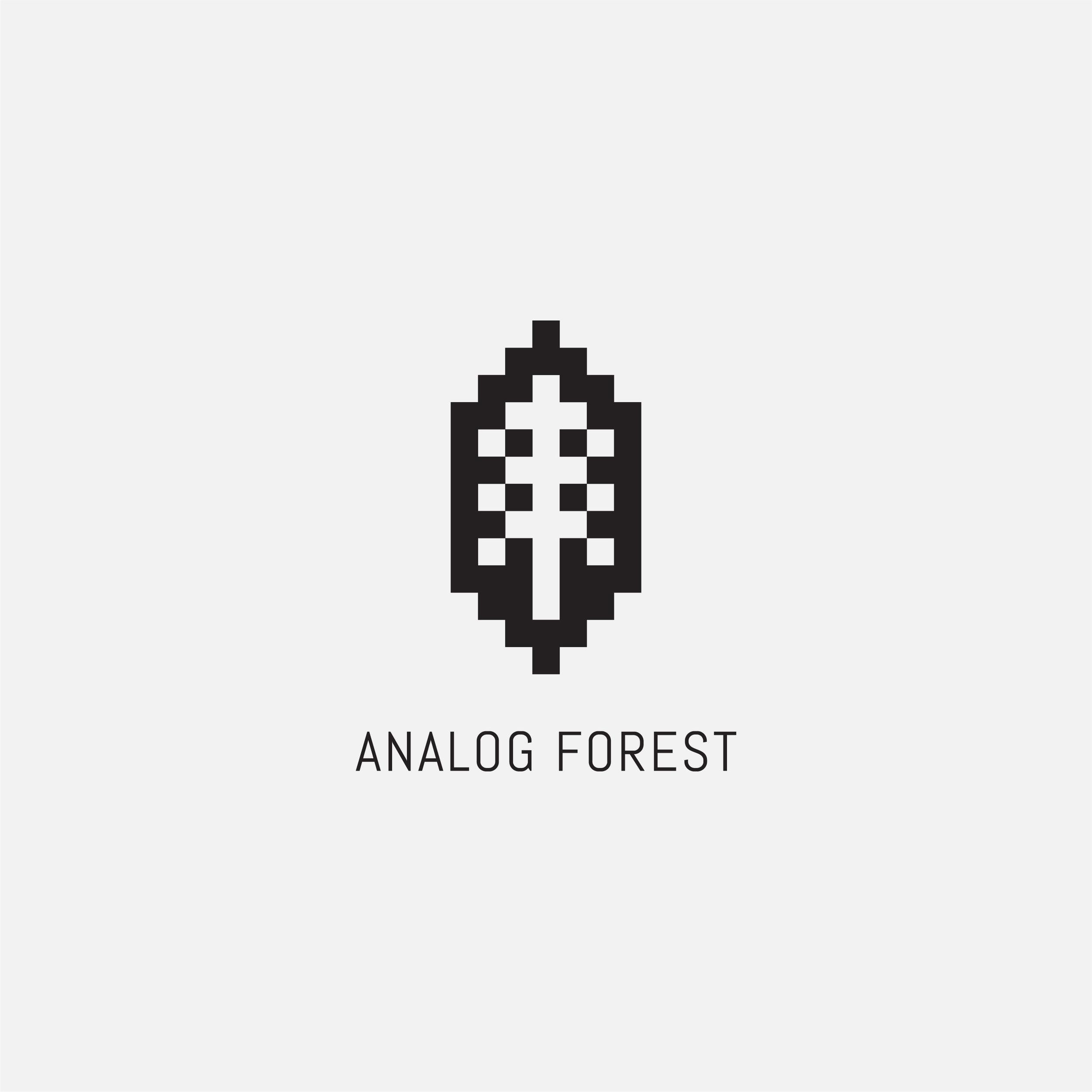 Analog Forest.jpg