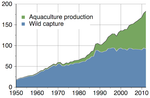 Global total wild fish capture and aquaculture production in million tonnes, as reported by the   FAO  .