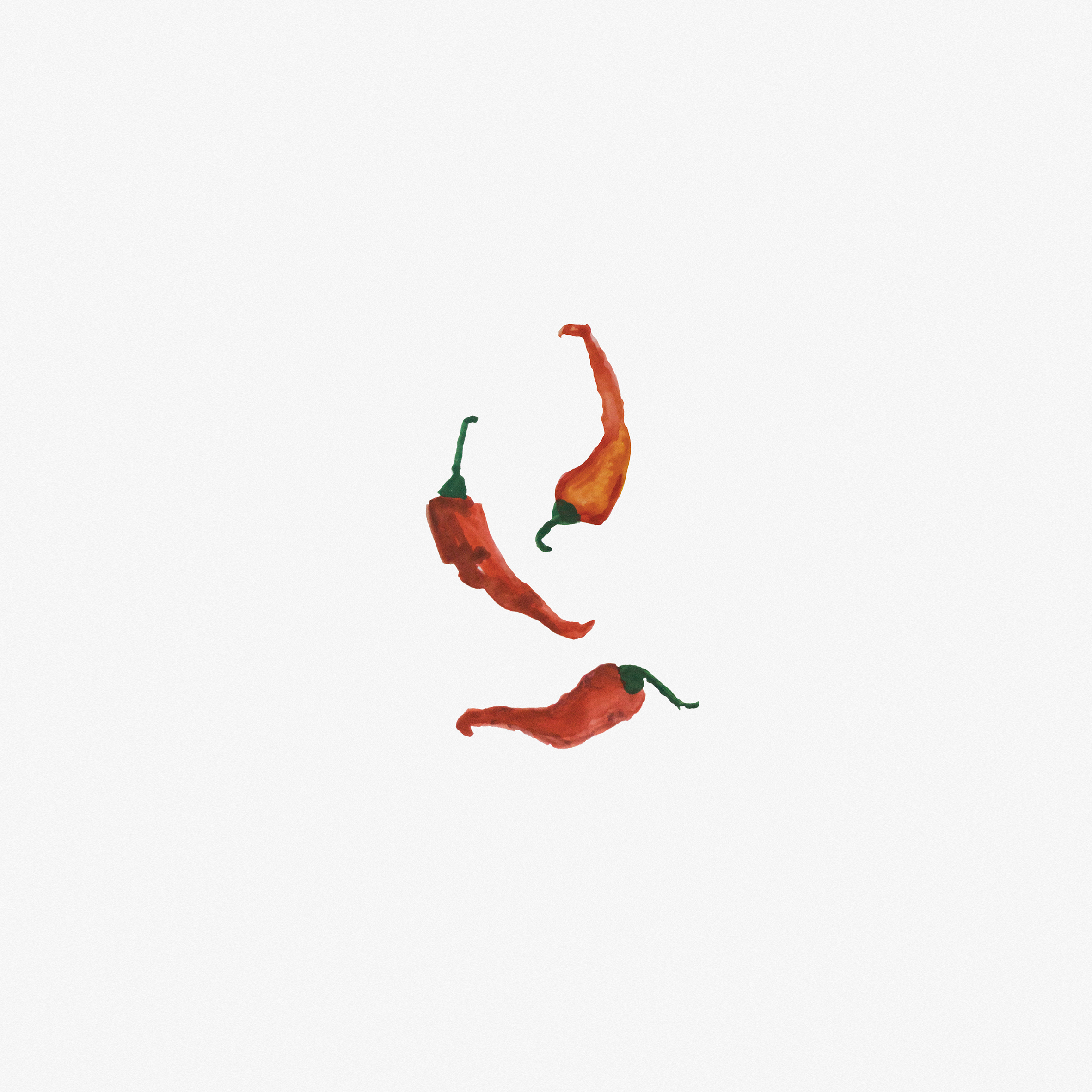 chilli-watercolour-painting.jpg