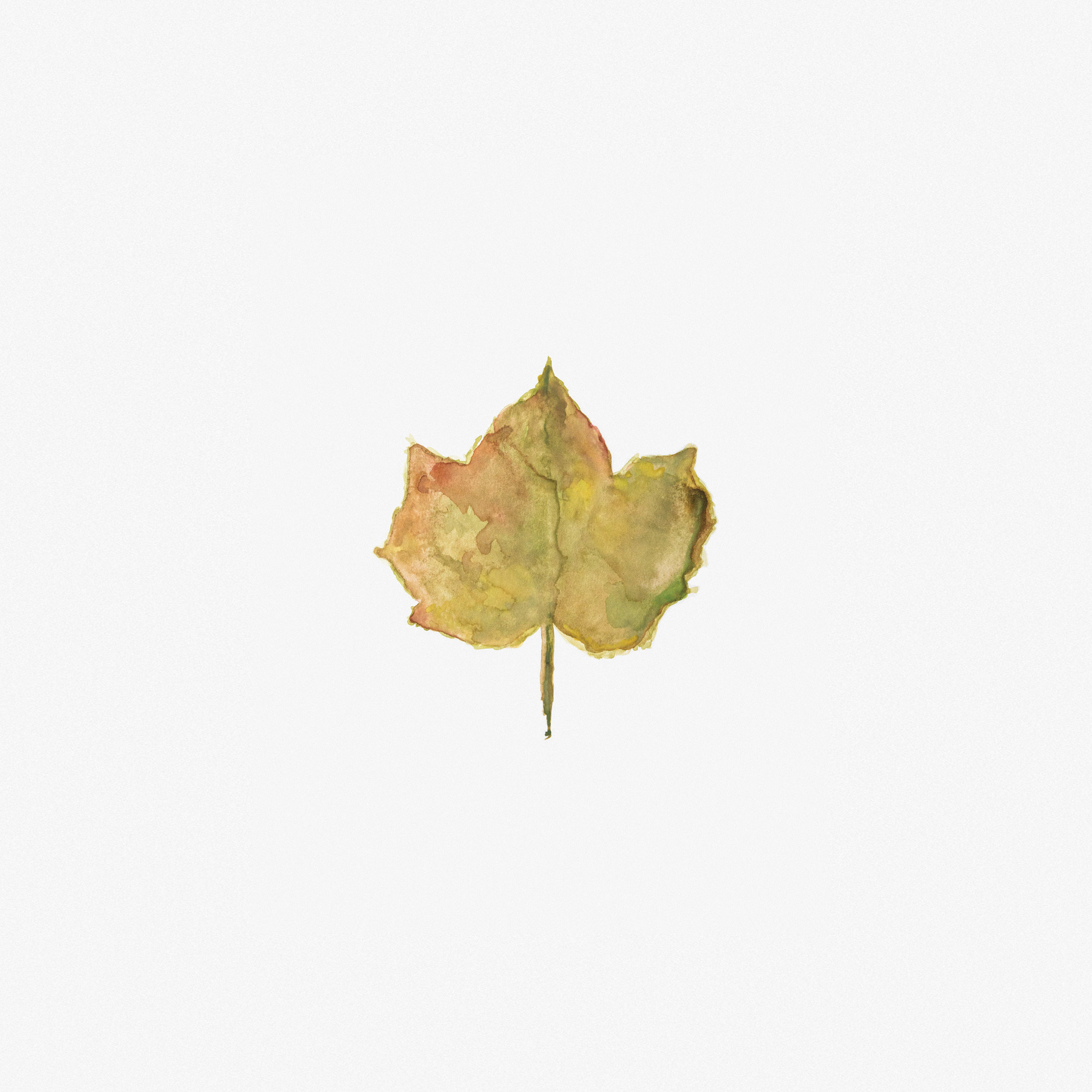 leaf-watercolour-painting.jpg