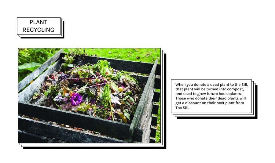 plant recycling.jpg
