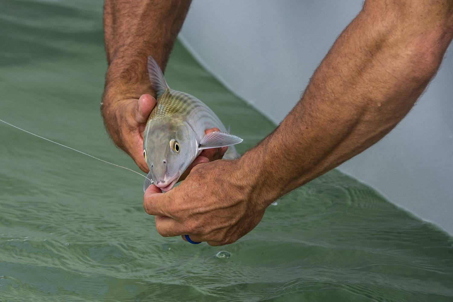 tom-rowland-shows-how-to-tie-a-bonefish-leader-in-the-how-to-tuesday-podcast