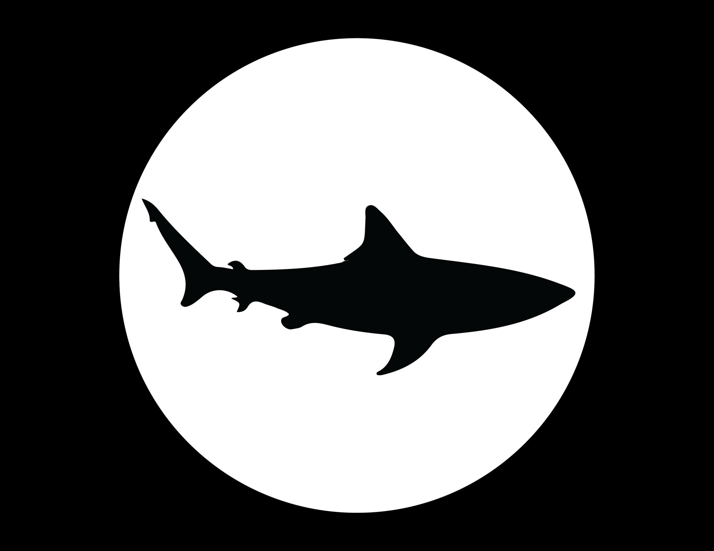 H2T_Shark.png