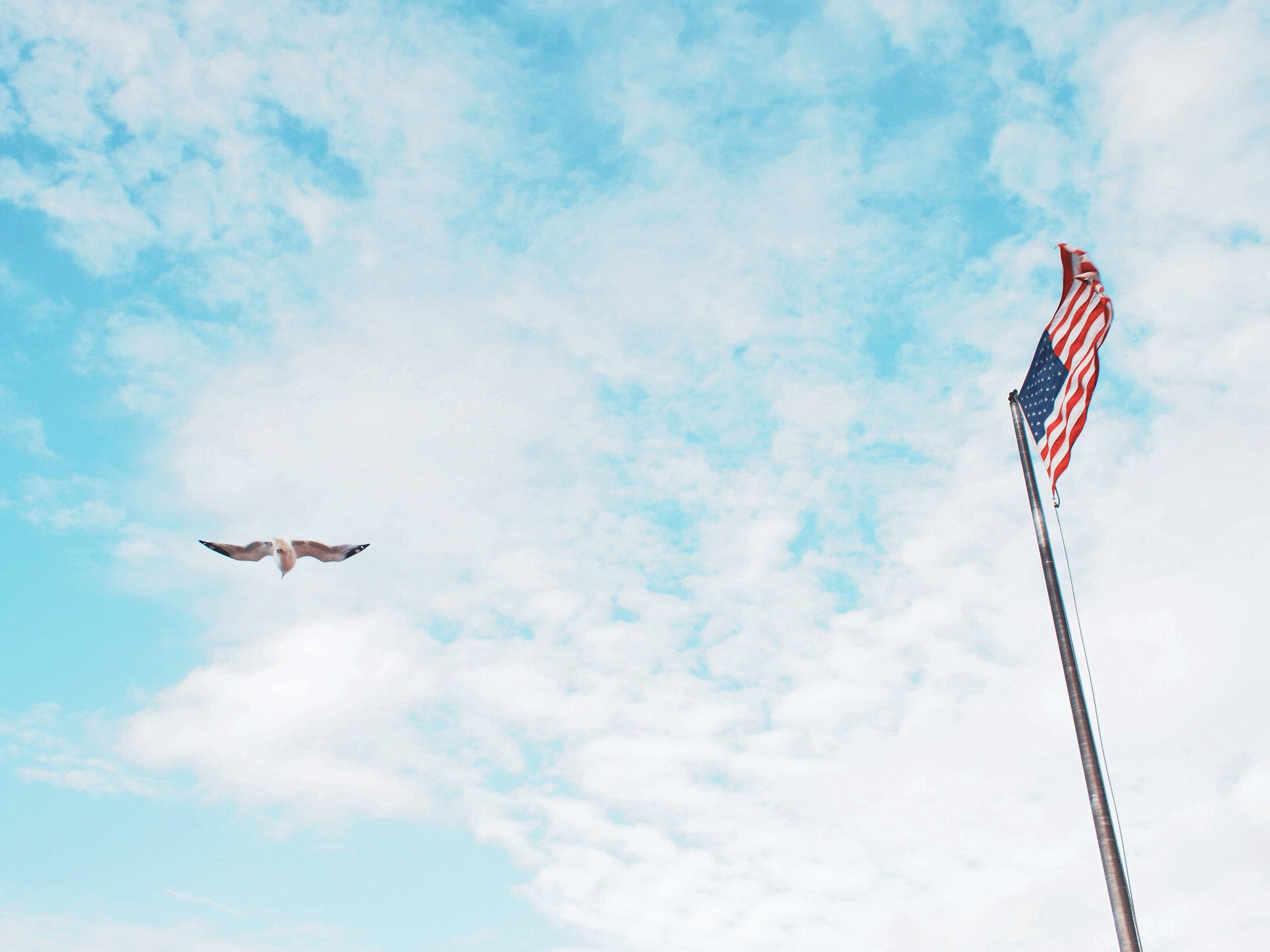 Why teach patriotism?