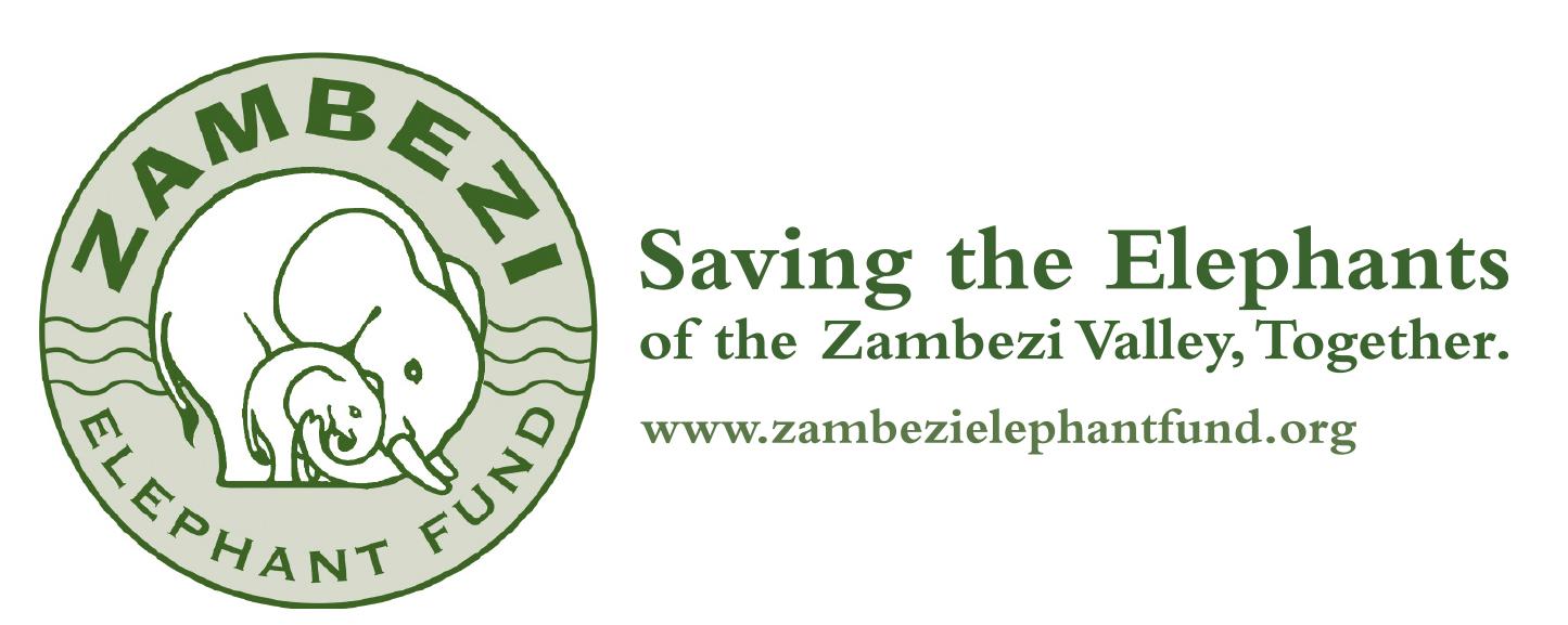 ZEF email logo large.jpg