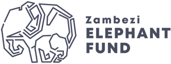 zef-logo-01.png
