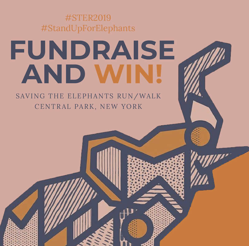 04 fundraise and win_01.jpg