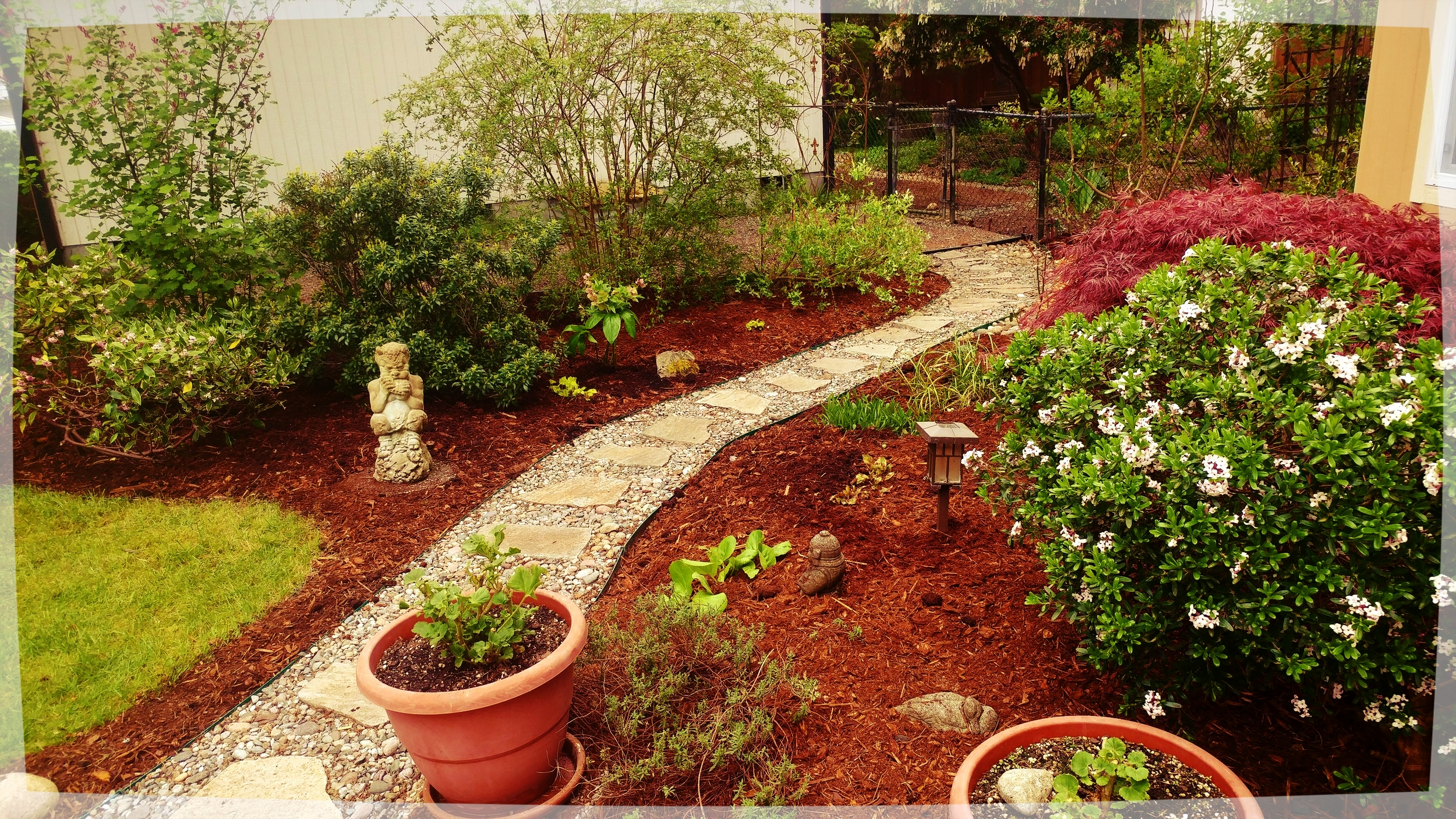 Less Path Equals More Plants