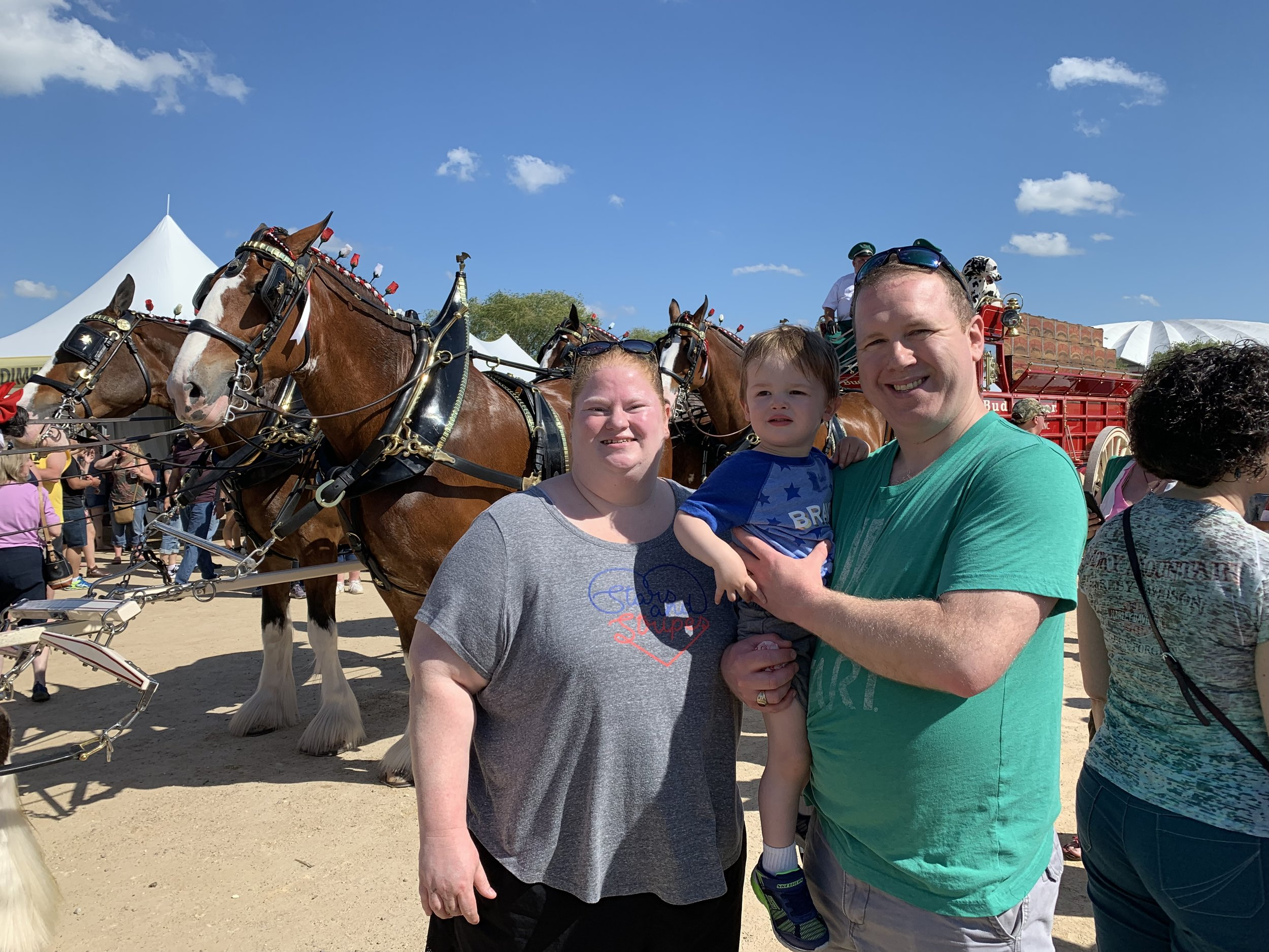 Getting to see the beautiful Clydesdale horses at Brat Fest