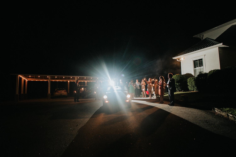 biltmore_estate_wedding_-1-54.jpg