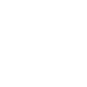 silk fingerprint.png