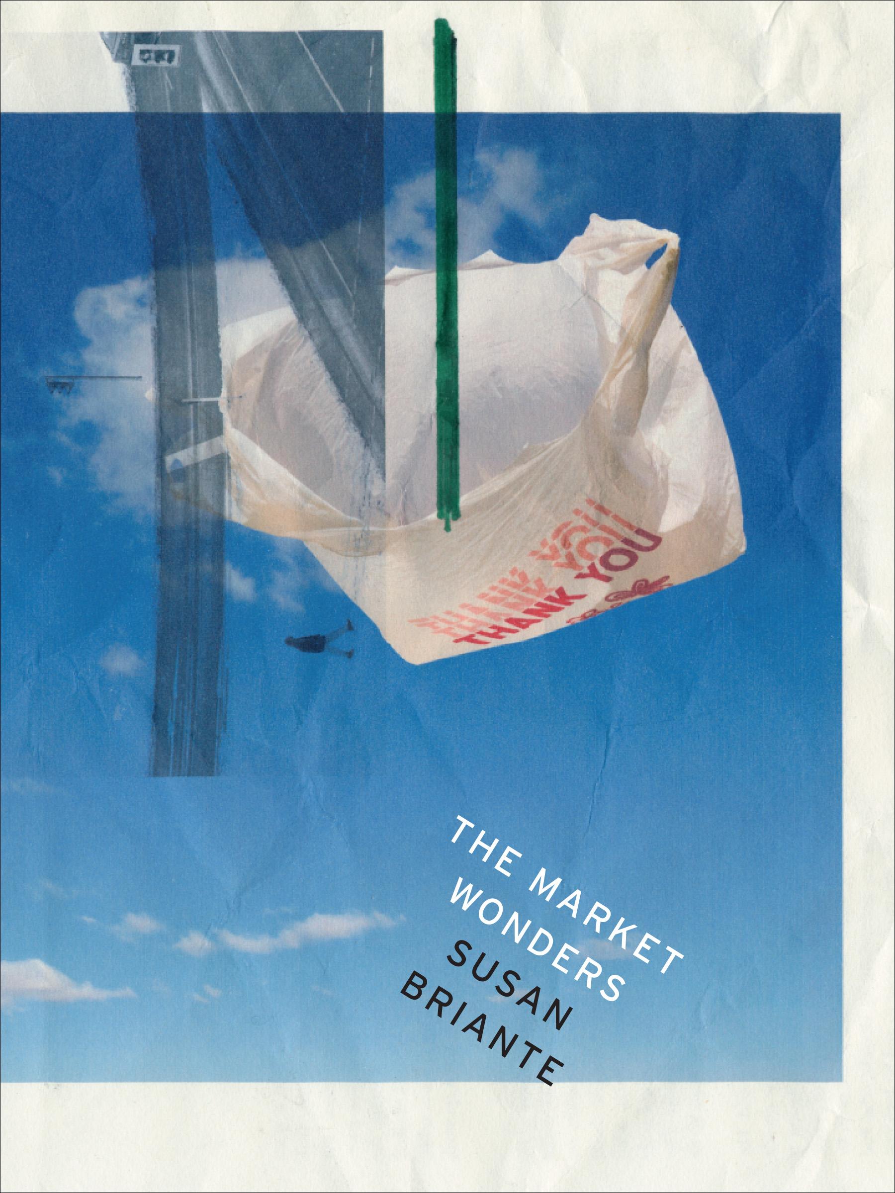 The Market Wonders  - a poem by Susan Briante