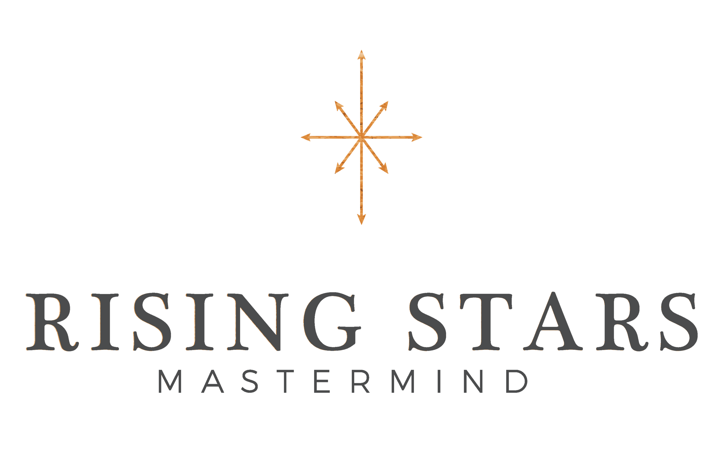 RSM_Web_Assets_RSM_Color_Large_Logo (1).png