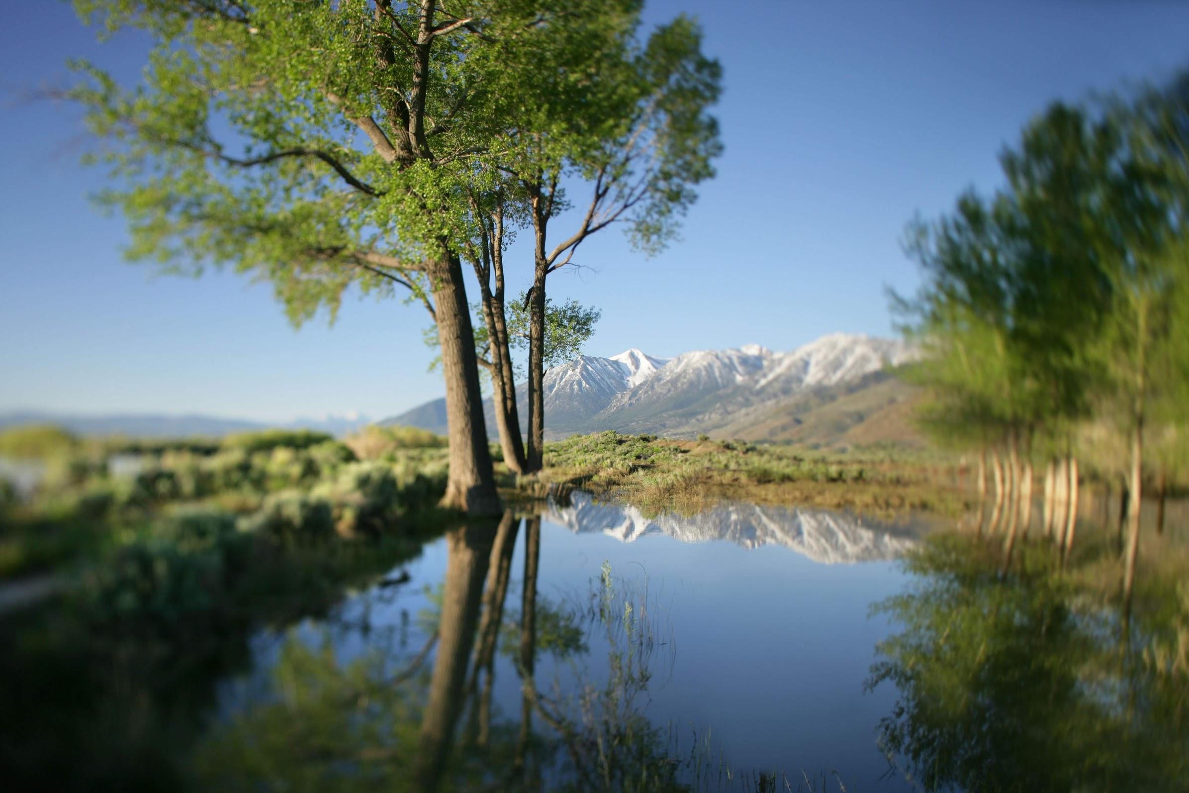 100_0372washoe vally landscape.jpg