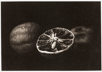 GINA WHITE    Dutch Lemons,  2018   Gravure from photopolymer plate 6 13/16 x 4 3/4 inches Edition #1/10, signed Retail framed: $800 © and courtesy Gina White; framing courtesy Artech Fine Art Framing     Learn More