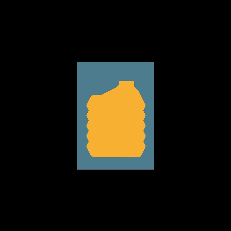 icon-script-what-a-voice.png