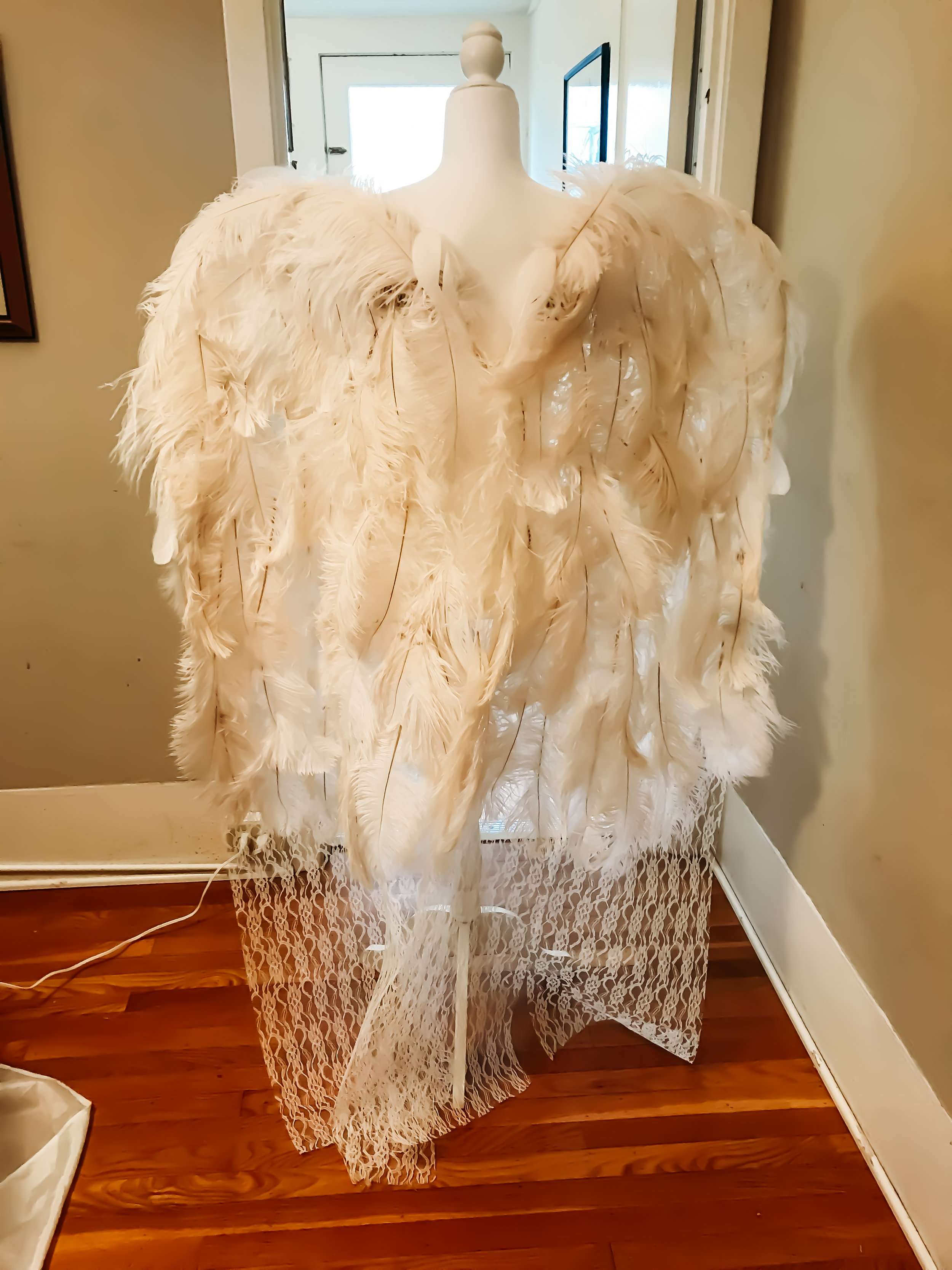 Just the ostrich feathers - bones showing