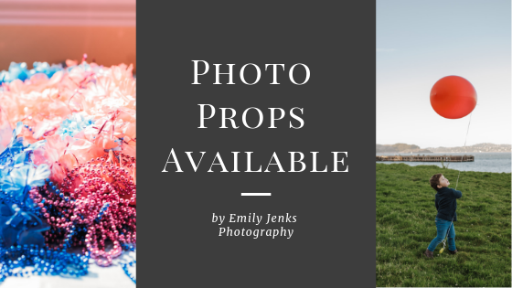 Photo Props Available by Emily Jenks Photography