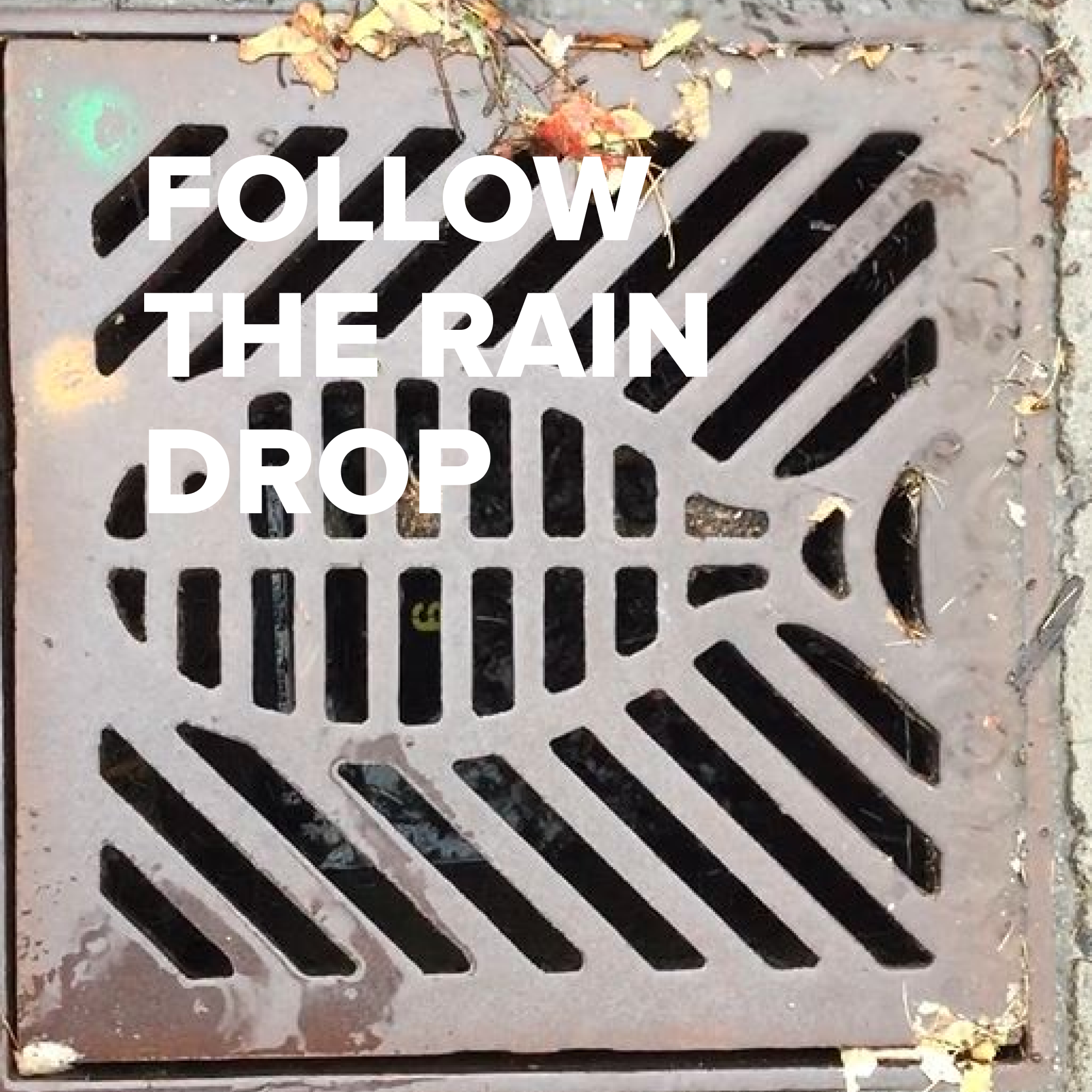 FollowTheRainDrop - Still 3.png